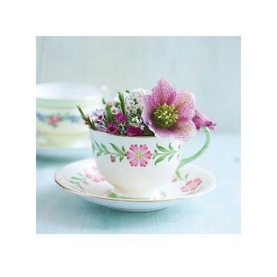 A Cupful of Flowers-Shooter & Floodgate-Art Print
