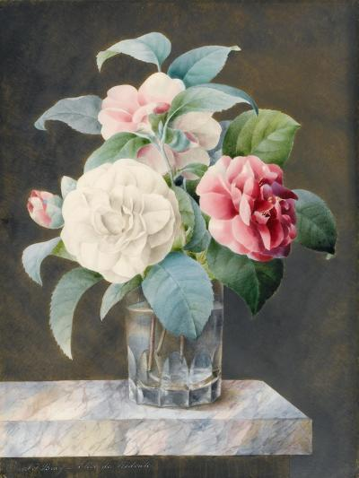 A Cut Glass Vase Containing White-Sarah Bray-Giclee Print