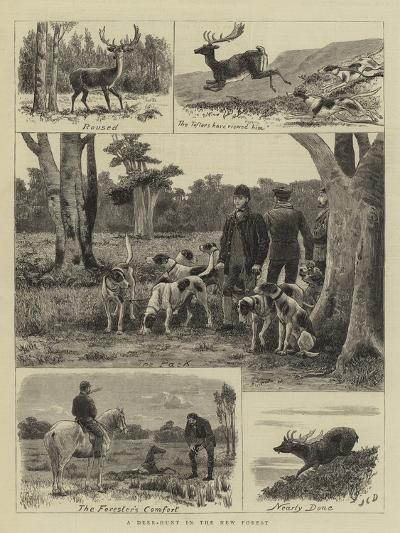 A Deer-Hunt in the New Forest-John Charles Dollman-Giclee Print