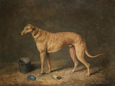 A Deerhound in a Stable Interior, 1817-Henry Thomas Alken-Giclee Print