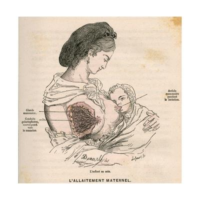Mother Breastfeeding 19C