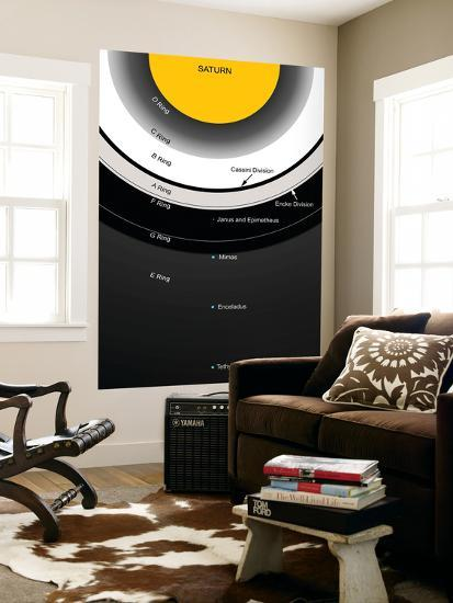 A Diagram Showing the Major Features of Saturn's Rings-Stocktrek Images-Wall Mural