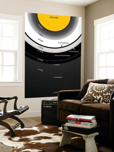 A Diagram Showing the Major Features of Saturn's Rings-Stocktrek Images-Giant Art Print
