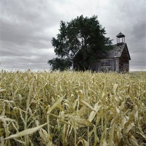 A Dilapidated Building in a Field