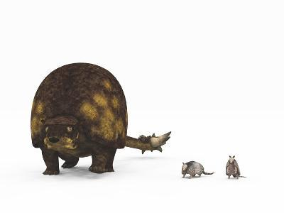 A Doedicurus Glyptodont Compared to Modern Armadillos--Art Print