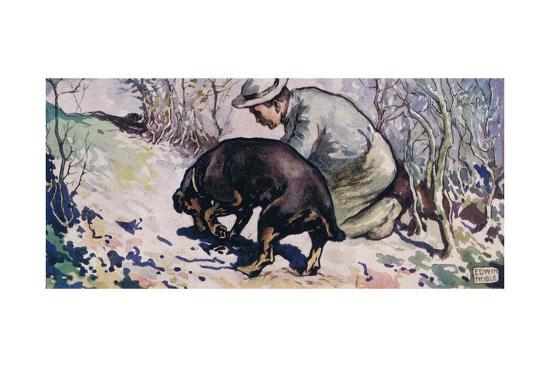 A Dog Helping a Man to Forage-John Edwin Noble-Giclee Print