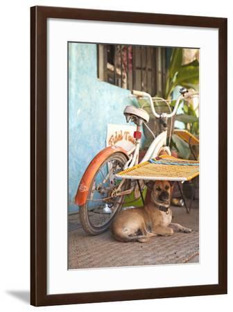 A Dog's Life IV-Karyn Millet-Framed Photographic Print