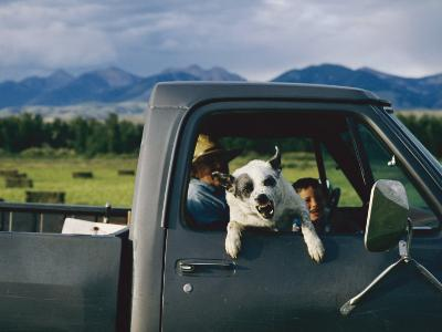 A Dog Snarls at the Photographer-Joel Sartore-Photographic Print