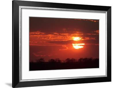 A Dramatic Fiery Sunset over Silhouetted Tree Tops-Joe Petersburger-Framed Photographic Print