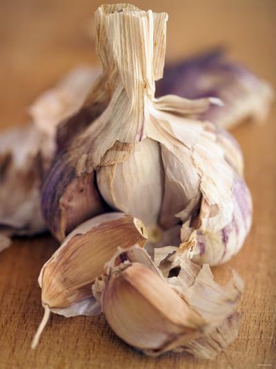 A Dried Garlic Bulb-Steven Morris-Photographic Print