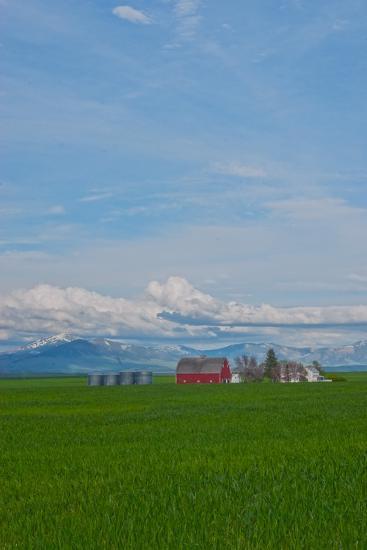 A Family Farm Sits Amid Wheat Fields Near Great Falls, Montana-Gordon Wiltsie-Photographic Print