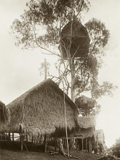 A Fantastic Treehouse at Ekiti Village, Sogeri, Papua New Guinea--Photographic Print