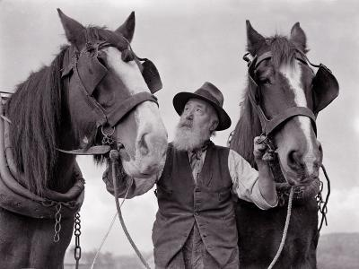 A Farmer with His Horses, 1962--Photographic Print