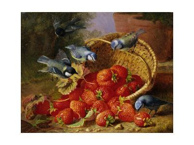 A Feast of Strawberries (Blue Tits) by Eloise Harriet Stannard-Eloise Harriet Stannard-Giclee Print