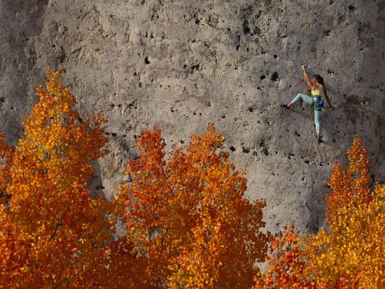 A Female Climber on a Cliff Wall-Bill Hatcher-Photographic Print