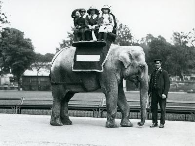A Female Indian Elephant 'Nellie', with Keeper, Giving Children a Ride at London Zoo, May 1914-Frederick William Bond-Photographic Print