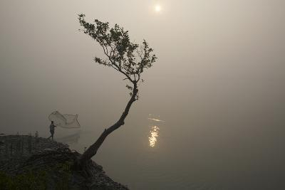 A Fisherman Casts a Net in India's Sundarbans Region-Steve Winter-Photographic Print
