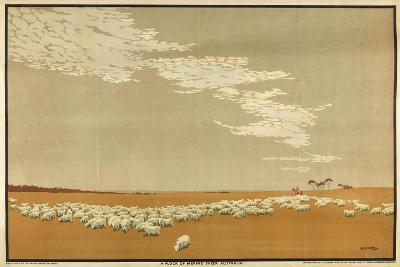 A Flock of Merino Sheep - Australia, from the Series 'Australia's Wealth of Wheat and Wool'-Archibald Bertram Webb-Giclee Print