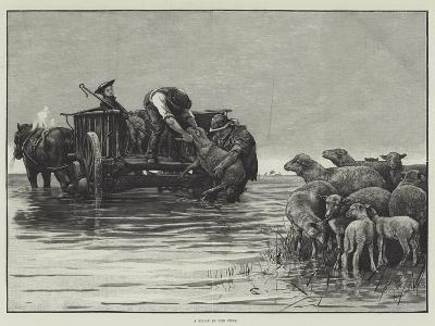 A Flood in the Fens--Giclee Print