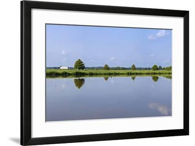 A Flooded Rice Field Near Abbeyville-Richard Nowitz-Framed Photographic Print
