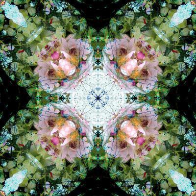 https://imgc.artprintimages.com/img/print/a-floral-mandala-montage_u-l-q130iaw0.jpg?p=0