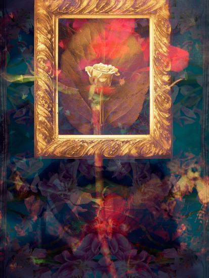 A Floral Montage from Roses in a Golden Frame-Alaya Gadeh-Photographic Print