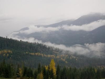 A Foggy and Misty Day in the Pacific Northwest-Taylor S^ Kennedy-Photographic Print