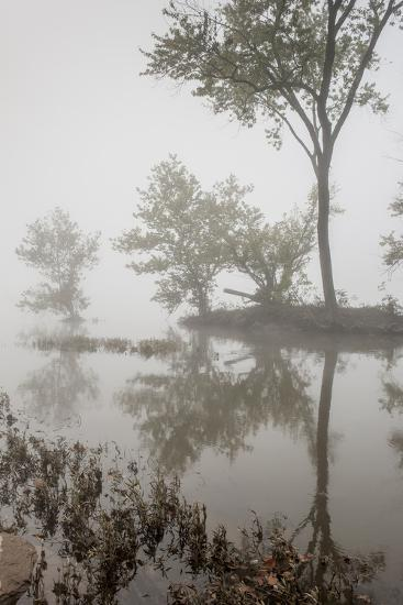 A Foggy Autumn Morning on the Potomac River-Irene Owsley-Photographic Print