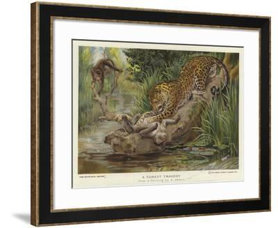 A Forest Tragedy--Framed Giclee Print