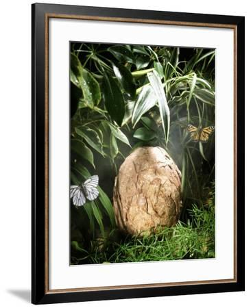 A Fossilized Dinosaur Egg, Probably of the Sauropod Hypselosaurus--Framed Giclee Print