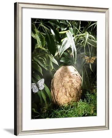 A Fossilized Dinosaur Egg, Probably of the Sauropod Hypselosaurus--Framed Giclee Print