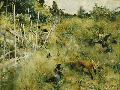 A Fox Taking a Crow-Bruno Liljefors-Giclee Print