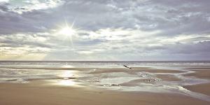 Seascape by A^ Franke