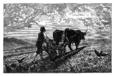 A French Agriculturist, C1890--Giclee Print