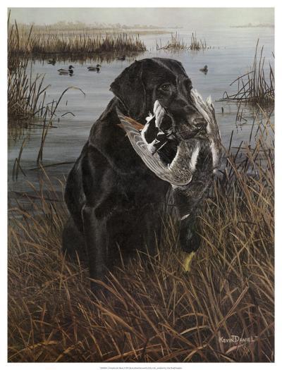 A Friend in the Marsh-Kevin Daniel-Art Print