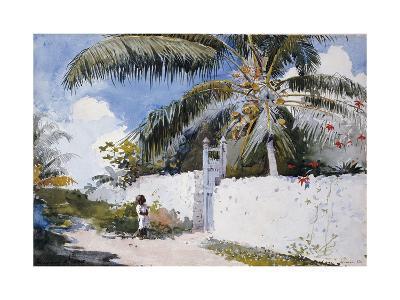 A Garden in Nassau, 1885-Winslow Homer-Giclee Print
