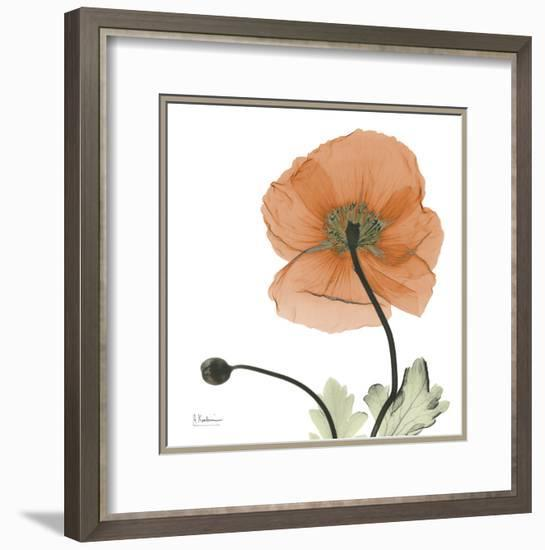 A Gift of Flowers in Orange-Albert Koetsier-Framed Art Print