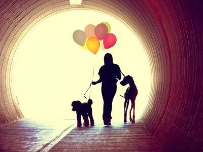 https://imgc.artprintimages.com/img/print/a-girl-at-the-end-of-a-tunnel-holding-balloons-and-two-dogs-done-with-an-instagram-vintage-retro-fi_u-l-q105dst0.jpg?p=0