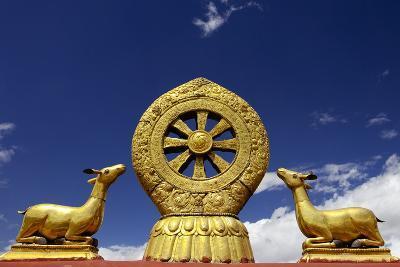 A Golden Dharma Wheel and Deer Sculptures-Simon Montgomery-Photographic Print