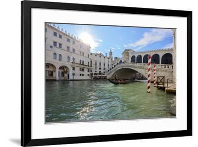 A gondolier rowing under Rialto Bridge in Venice, UNESCO World Heritage Site, Veneto, Italy, Europe-Nando Machado-Framed Photographic Print