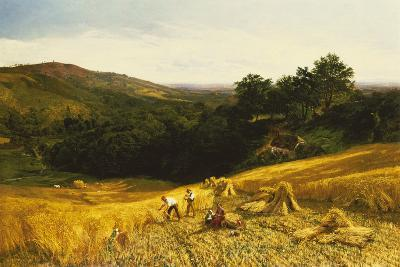 A Good Harvest-George Vicat Cole-Giclee Print