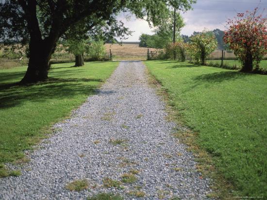 A Gravel Road Marks the Entrance/Exit to Waveland Farm in Nebraska-Joel Sartore-Photographic Print