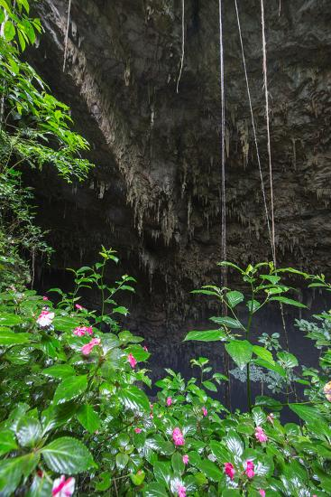 A Green Lush Jungle Entrance to the Grotto Azul Cave System in Bonito, Brazil-Alex Saberi-Photographic Print