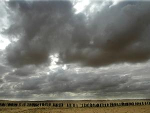A Grey Sky Hangs Over Israeli Soldiers as They March Near the Tseelim Army Base