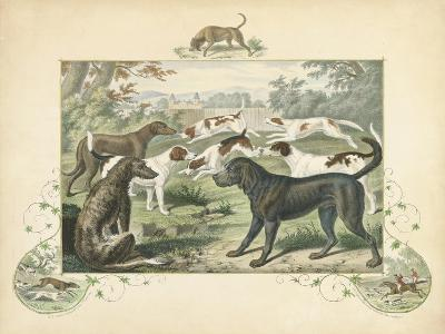 A Group of Hounds--Art Print