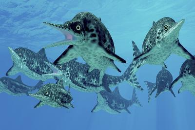 A Group of Ichthyosaurs Swimming in Prehistoric Waters-Stocktrek Images-Art Print
