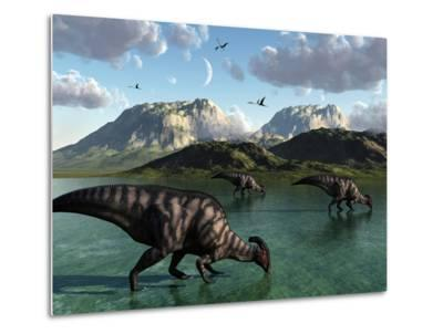 A Group of Parasaurolophus Dinosaurs Feed from a Freshwater Lake-Stocktrek Images-Metal Print