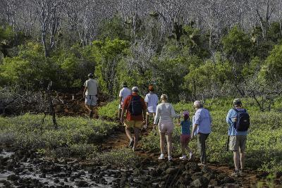 A Group of Tourists Hiking Along the Trail Looking for Land Iguanas-Jad Davenport-Photographic Print