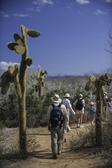 A Group of Tourists Hiking Along the Trail, Looking for Land Iguanas-Jad Davenport-Photographic Print
