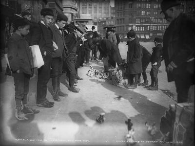 A Gutter Toy Merchant, New York City, 1903--Photographic Print